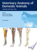 Veterinary Anatomy of Domestic Animals
