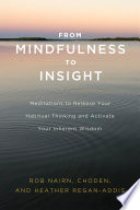 From Mindfulness to Insight Book