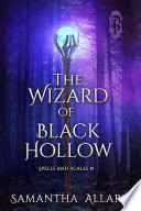 The Wizard of Black Hollow