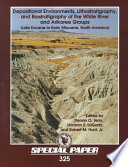 Depositional Environments  Lithostratigraphy  and Biostratigraphy of the White River and Arikaree Groups  Late Eocene to Early Miocene  North America