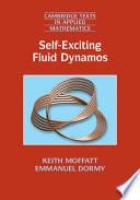 Self Exciting Fluid Dynamos