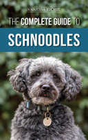 The Complete Guide to Schnoodles