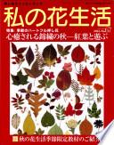 特集:心癒される錦繡の秋-紅葉と遊ぶ