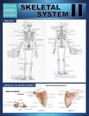 Skeletal System II  Speedy Study Guides