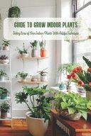 Guide to Grow Indoor Plants
