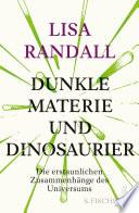 Dunkle Materie und Dinosaurier  : Die erstaunlichen Zusammenhänge des Universums