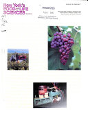 New York s Food and Life Sciences Quarterly Book