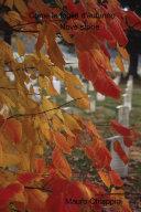 Come le foglie d'autunno
