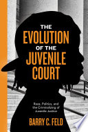 The Evolution of the Juvenile Court Book