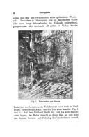หน้า 34