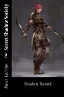 Secret Shadow Society ebook
