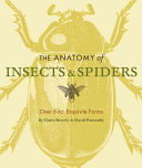 The Anatomy of Insects and Spiders