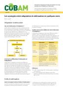 Les synergies entre adaptation et atténuation en quelques mots ebook