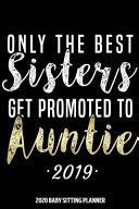 Auntie 2020 Baby Sitting Planner Book