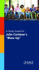 A Study Guide for Julio Cortazar s  Blowup