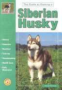 Guide to Owning a Siberian Husky