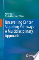 Unravelling Cancer Signaling Pathways  A Multidisciplinary Approach Book