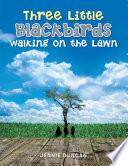 Three Little Black Birds Walking on the Lawn