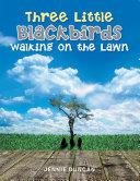 Three Little Black Birds Walking on the Lawn ebook