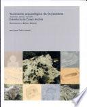 Yacimiento arqueológico de Cuyacabras