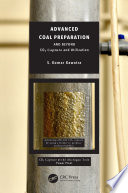 Advanced Coal Preparation and Beyond