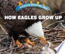 How Eagles Grow Up