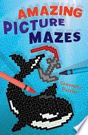 Amazing Picture Mazes Book