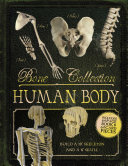 Bone Collection  Human Body