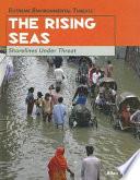 The Rising Seas