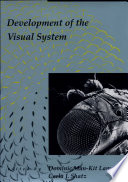 Development of the Visual System
