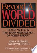 Beyond A World Divided