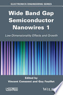 Wide Band Gap Semiconductor Nanowires 1