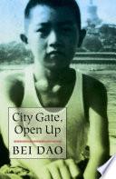 City Gate  Open Up