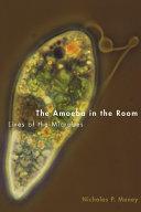 The Amoeba in the Room