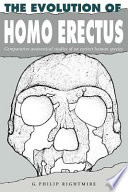 Read Online The Evolution of Homo Erectus For Free