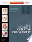 Core Techniques In Operative Neurosurgery E Book Book PDF
