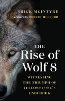 The Rise of Wolf 8 Book