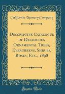 Descriptive Catalogue of Deciduous Ornamental Trees  Evergreens  Shrubs  Roses  Etc    1898  Classic Reprint