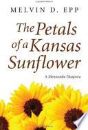 The Petals of a Kansas Sunflower