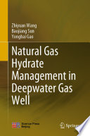 Natural Gas Hydrate Management In Deepwater Gas Well Book PDF
