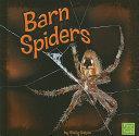 Barn Spiders