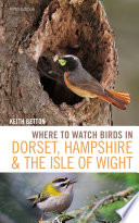 Where to Watch Birds in Dorset  Hampshire and the Isle of Wight