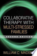 The gift of therapy an open letter to a new generation of collaborative therapy with multi stressed families william c madsen limited preview 2007 negle Choice Image