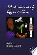 Mechanisms of Regeneration