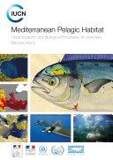 Mediterranean Pelagic Habitat