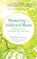 Mastering the Addicted Brain Pdf/ePub eBook