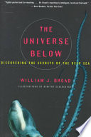 The Universe Below