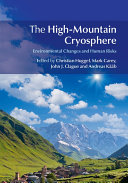 The High Mountain Cryosphere