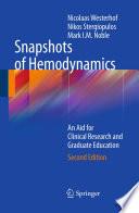 Snapshots of Hemodynamics