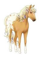 Appaloosa Horse Journal ebook